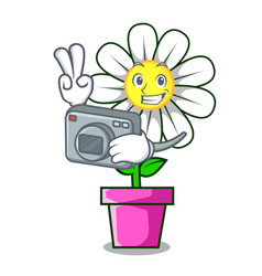 Photographer daisy flower mascot cartoon vector