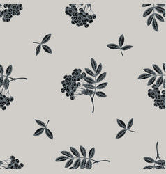 seamless pattern with hand drawn stylized rowan vector image