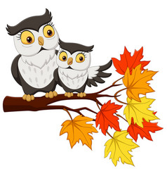 cute mother owl cartoon and baon tree branches vector image