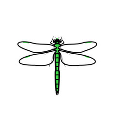 dragonfly logo symbol icon sign green color vector image