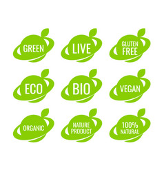 green organic vegan food logo labels and tags vector image