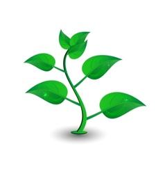 Green petal vector