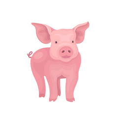 Little piglet standing isolated on white vector