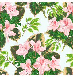 seamless texture tropical flowers light pink vector image
