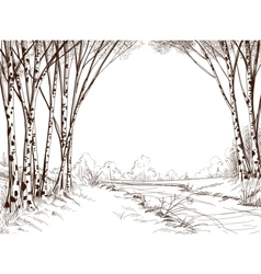 Birch tree forest graphic background vector
