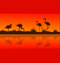 collection of lake scene with flamingo silhouettes vector image