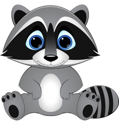 cute raccoon on white background vector image