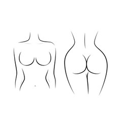 Contour naked female figure front and back vector