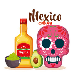 Day of the dead mask with tequila bottle vector