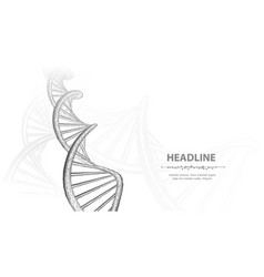 dna abstract 3d polygonal wireframe dna molecule vector image