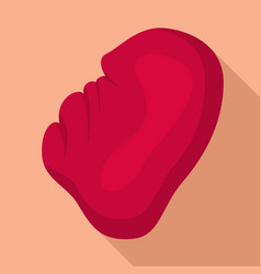 human spleen icon flat style vector image