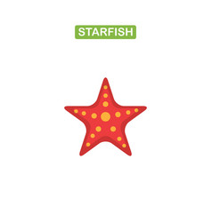 sea star icon on a white background vector image