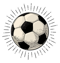 soccer ball with ray engraving vintage vector image