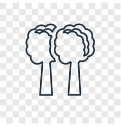 tree concept linear icon isolated on transparent vector image