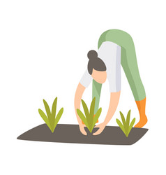 woman caring for plants in the garden girl vector image