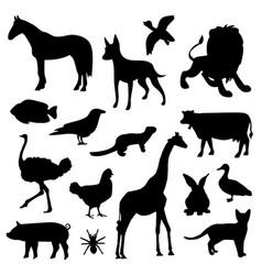 animal farm pet wildlife zoo icon vector image vector image