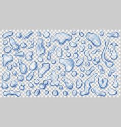 transparent light blue drops vector image vector image