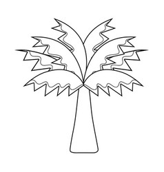 Line palm tree with leaves and vegetation vector