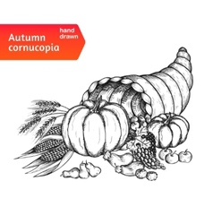 Cornucopia horn plenty with autumn harvest vector