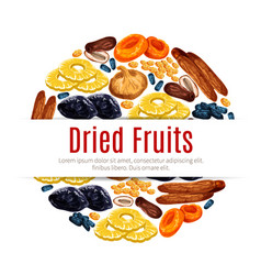 Dried fruit raisin apricot label for food design vector