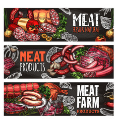 meat and sausage blackboard banner for food design vector image