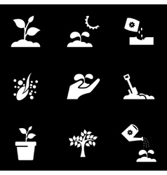 white growing icon set vector image