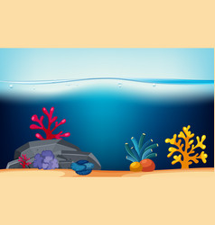 nature scene with coral reef underwater vector image
