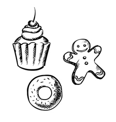 Cupcake gingerbread man and donut sketches vector image vector image