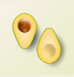 3d realistic cut half avocado with seed set vector image