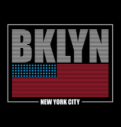 bklyn usa flag t-shirt vector image