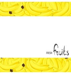 bunch of bananas vector image