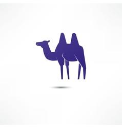 Camel Icon vector