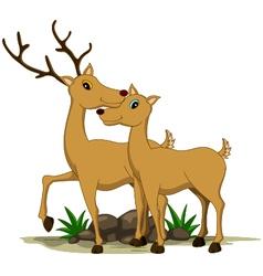 cute couple deer cartoon vector image