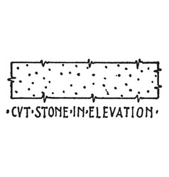 cvt stone in elevation material symbol deep vector image