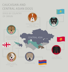 dogs by country of origin caucasian and central vector image