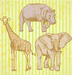 Hypopo Elephant Geraffe vector image