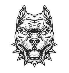 Pitbull head in black and white color style vector