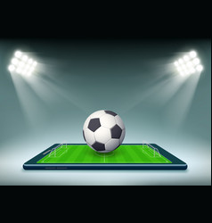 soccer ball and stadium field on smartphone screen vector image