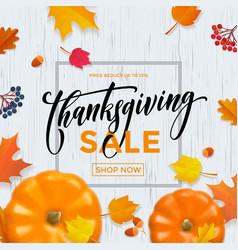 thanksgiving sale poster autumn pumpkin promo vector image