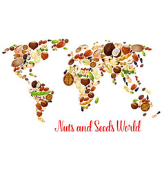 world map of nuts seed and bean food design vector image