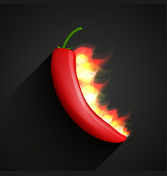 chili pepper in fire vector image