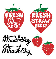 fresh strawberry labels isolated on white vector image vector image