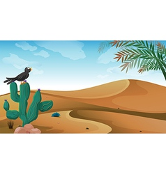 A bird above the cactus plant at the desert vector image