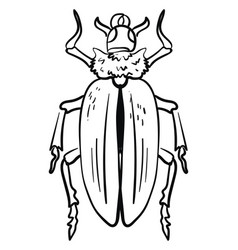 beetle drawing on white background vector image