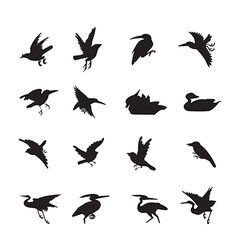 bird and duck Siluate style black color vector image