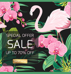 Sale banner orchid flowers jungle leaves flamingo vector
