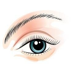 Female eye vector image