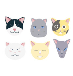 nice cats set vector image