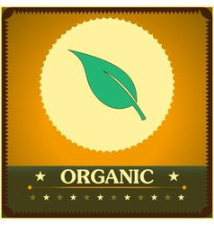 Vintage style organic poster vector image