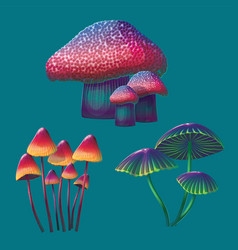 A high quality fantasy mushrooms set vector